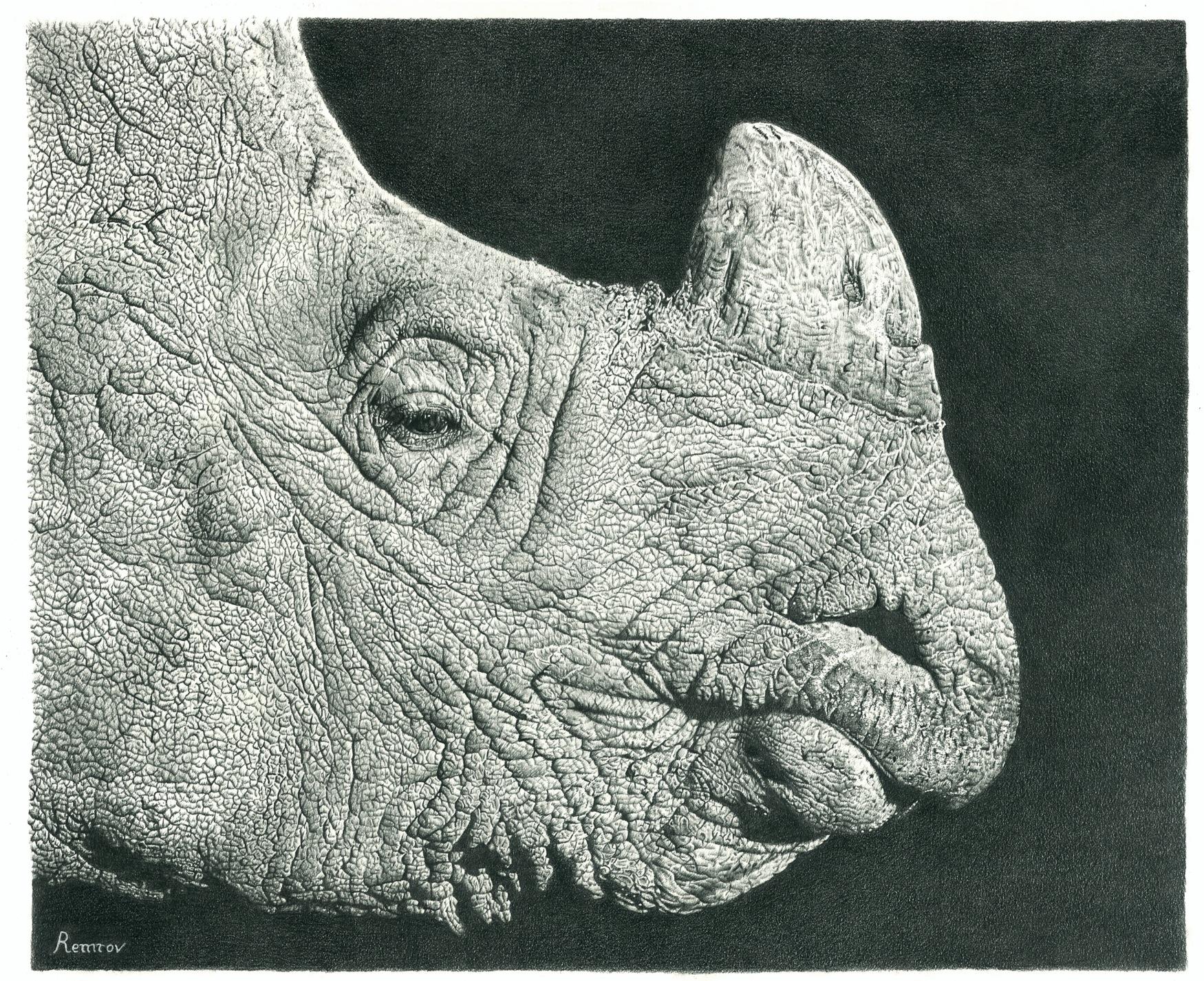 Mhaf featured artist remrov vormer photorealist pencil artist